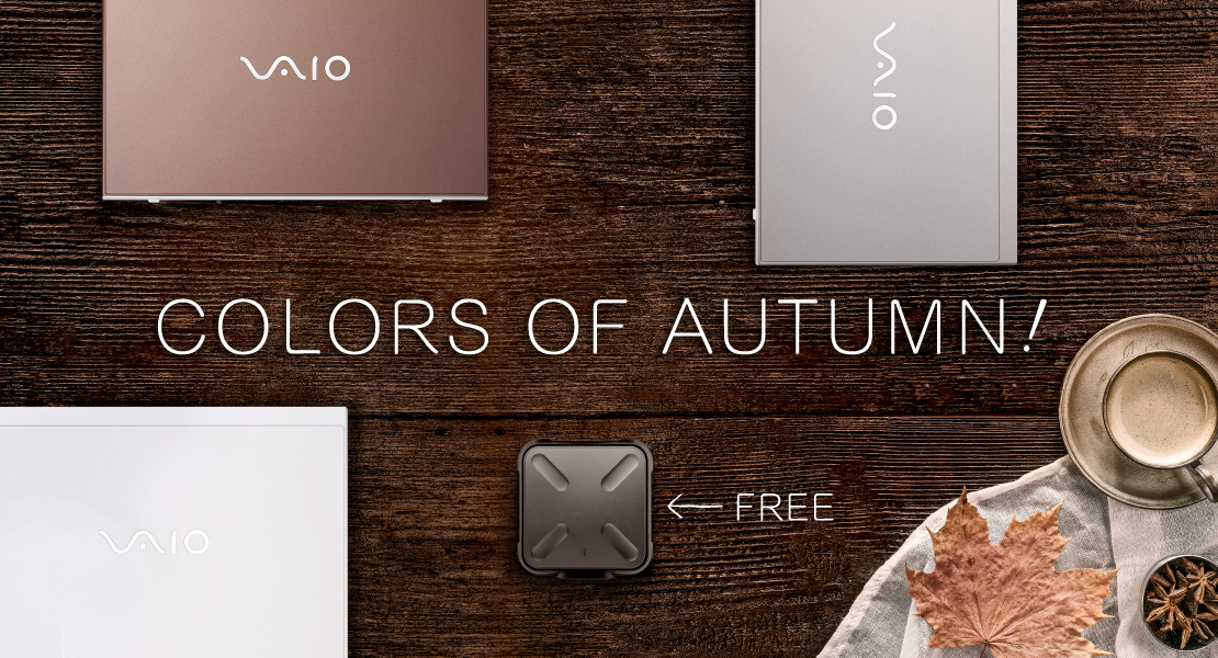 Purchase VAIO S11 to get 256GB external high-speed SSD for free!